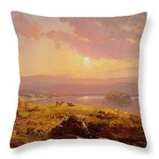 Susquehanna River Throw Pillow