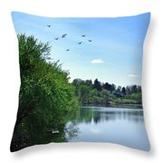 Susquehanna Serenty Throw Pillow