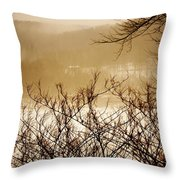Susquehanna Vibes... Throw Pillow