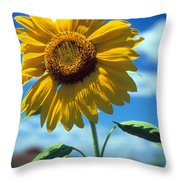 Sussex County Sunflower Throw Pillow