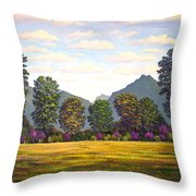 Sutter Buttes In Springtime Throw Pillow