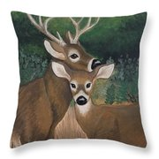 Suwannee River Afternoon Throw Pillow