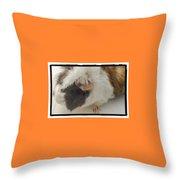 Suzie Cute Throw Pillow