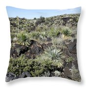 Sw01 Southwest Throw Pillow