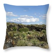 Sw03 Southwest Throw Pillow
