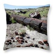 Sw10 Southwest Throw Pillow