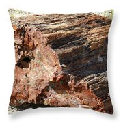 Sw11 Southwest Throw Pillow