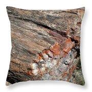 Sw14 Southwest Throw Pillow
