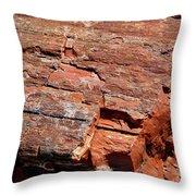 Sw16 Southwest Throw Pillow
