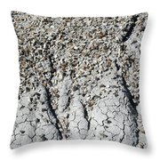 Sw18 Southwest Throw Pillow