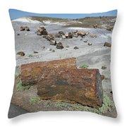Sw19 Southwest Throw Pillow