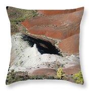 Sw27 Southwest Throw Pillow
