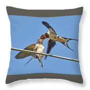 Swallow And Cub Throw Pillow