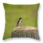 Swallow On A Stump Throw Pillow
