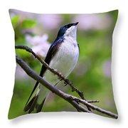 Swallow Song Throw Pillow