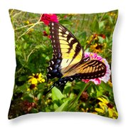 Swallow Tail Butterfly Enjoying The Sunshine Throw Pillow
