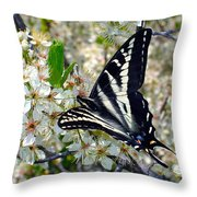 Swallowtail And Plum Blossoms Throw Pillow
