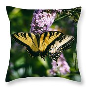 Swallowtail Butterfly At The Maryland Zoo Throw Pillow