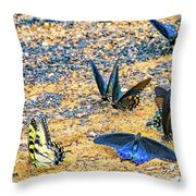 Swallowtail Butterfly Convention Throw Pillow