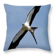 Swallowtail Kite Throw Pillow