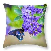Swallowtail On Mountain Laurel Throw Pillow