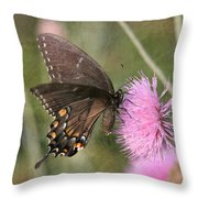 Swallowtail On Thistle Throw Pillow