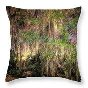 Swamp 2 Throw Pillow