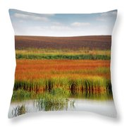 Swamp And Field Landscape Autumn Season Throw Pillow