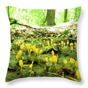 Swamp Becon Fungi Throw Pillow