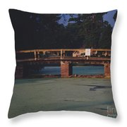 Swamp Bridge Throw Pillow