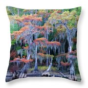 Swamp Dance Throw Pillow
