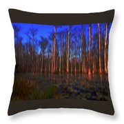 Swamp In Cypress Gardens Throw Pillow