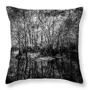 Swamp Island Throw Pillow
