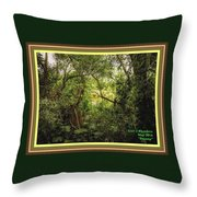 Swamp L A With Decorative Ornate Printed Frame. Throw Pillow