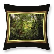 Swamp L B With Decorative Ornate Printed Frame. Throw Pillow
