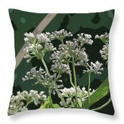 Swamp Milkweed Abstract Throw Pillow