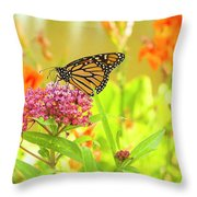 Swamp Milkweed And Monarch Throw Pillow