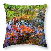 Swamp Pallet Throw Pillow