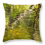 Swamp Reflections Abstract Throw Pillow