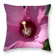 Swamp Rose Mallow Throw Pillow