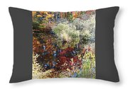 Swamp Whimsey Throw Pillow