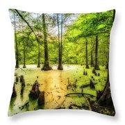 Swampland Dreams Throw Pillow