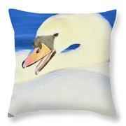 Swan 10 Throw Pillow