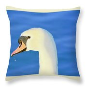 Swan 11 Throw Pillow