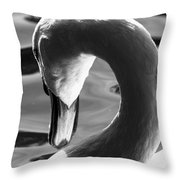 Swan Abstract Throw Pillow
