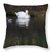 Swan And Geese Throw Pillow
