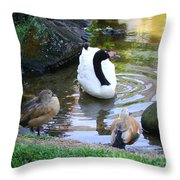 Swan And Wood Ducks Throw Pillow