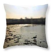 Swan At Coombe Cellars Devon, Teignmouth Throw Pillow