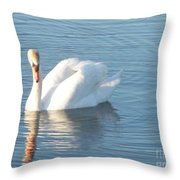 Swan Cape May Throw Pillow