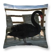 Swan Chairs Throw Pillow